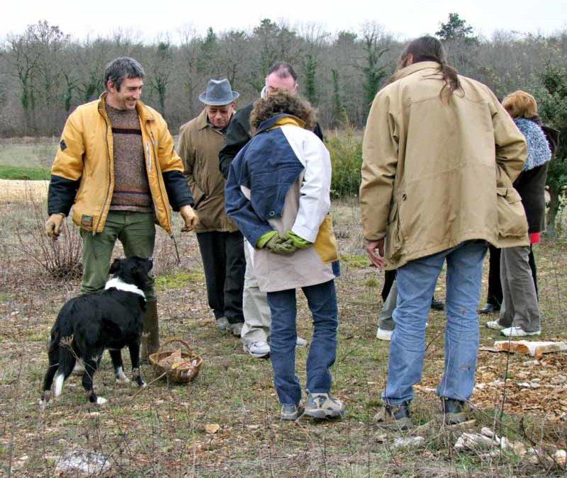 Truffière Les Hyacinthes